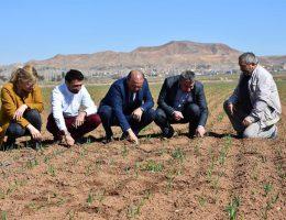 Aksaray'da tarım arazilerinde denetim çalışmaları sürüyor