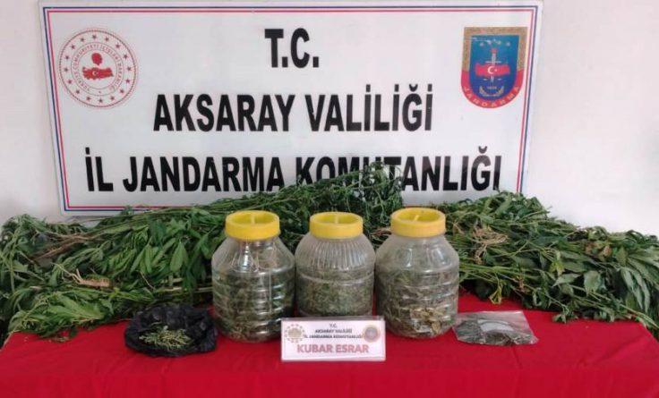Aksaray Jandarma'dan uyuşturucu operasyonu
